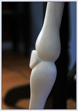 Polycarbonate My 3rd Leg Cane